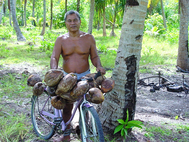coconuts on bike